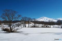 冬師散策Ⅰ
