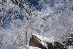 姫神山霧氷Ⅷ