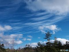 初冬の青空Ⅰ