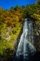 2012立又渓谷秋Ⅸ・一の滝