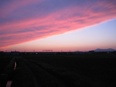 夕焼け雲と弥彦山