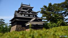 思い出の地 松江城