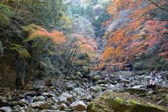 赤目渓谷の秋