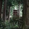 夏の室生寺 五重の塔