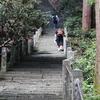 Steps to Heaven 室生寺の石段