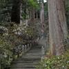 石楠花の寺