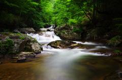 梅雨色の渓