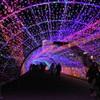ジェルミネーションのトンネル