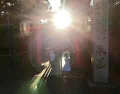 花園稲荷神社参道
