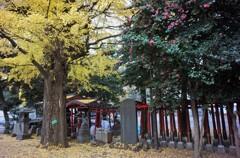 女性に人気の威徳稲荷神社