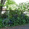 草生す自転車