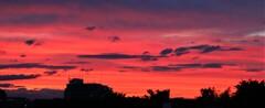 深紅の夕焼け