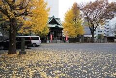落葉の太宗寺