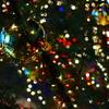 tree glitter