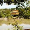 The Golden Pavilion2