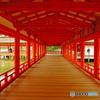 厳島神社本殿回廊