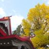 『青空×銀杏』
