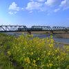 鉄橋だ!鉄橋だ!楽しいなぁ〜(^。^)