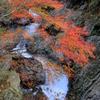 『小田深山渓谷~川×紅葉』