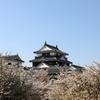 『松山城×桜』