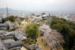 『松山城×景色』
