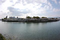 平和記念公園 桜