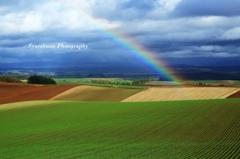 虹が立つ丘
