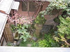 東茶屋中庭