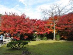 大河内庭園1