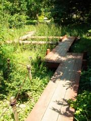 池の上の遊歩道