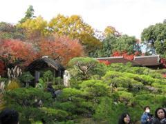 大河内庭園4