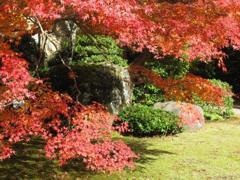 大河内庭園2