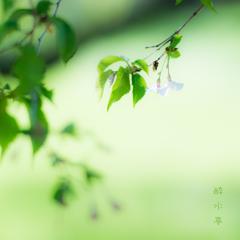 春狭間(はるはざま)