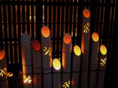 竹灯りとんぼ