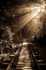 線路に沿って・・・