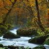 autumn stream4