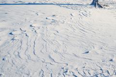 茶臼山の雪原
