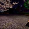 桜のベンチで