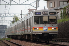 7T3A4318