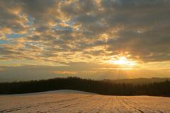 大地も染まる冬の朝