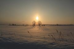 不思議な太陽