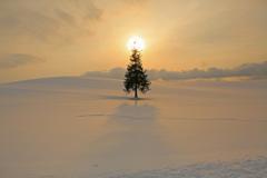 冬が終わり