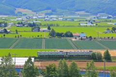 ローカル線 in 北海道