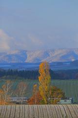 季節の変わり目 秋から冬へ