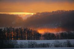 オレンジ色の朝