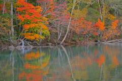 秋彩の湖面
