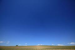 青い空気感