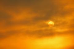 日の目を見たい
