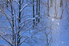 冬バブル Ⅲ