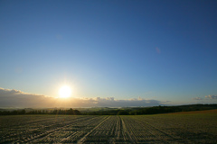 収穫を終えた大地